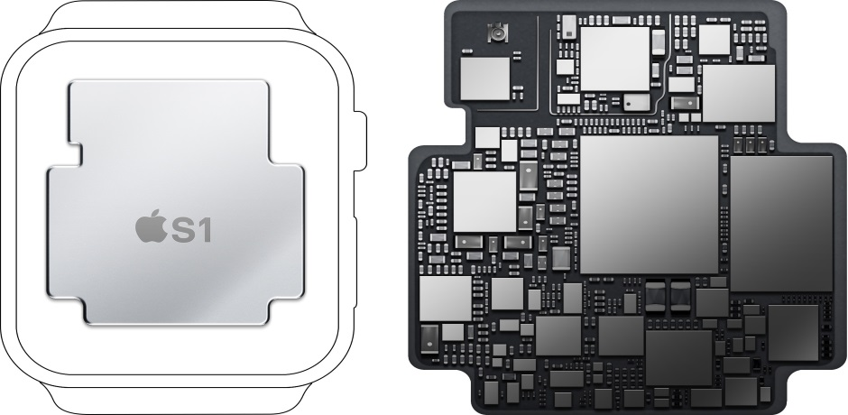 Apple Watch Teardown4